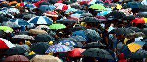 parapluieb