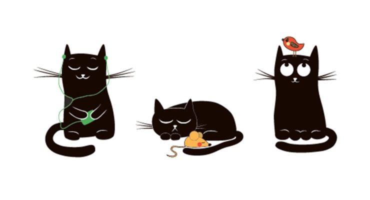 Un travailleur social peut-il agir et penser comme un chat ?