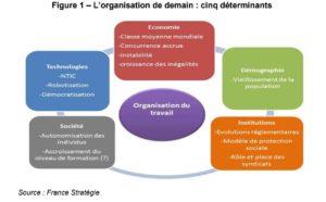 Oranisation des métiers france stratégie